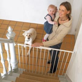 Pet Gate Streamline lépcsőrács